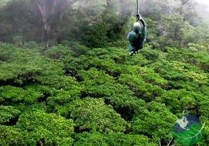 Monteverde Costa Rica - canopy