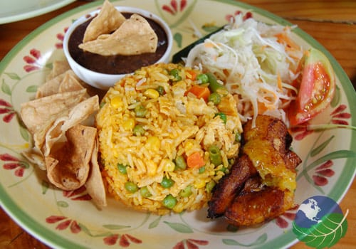 Costa rica food arroz con pollo is a favorite dish throughout central america in costa rica it is popular as a birthday party meal that can feed the masses forumfinder Gallery