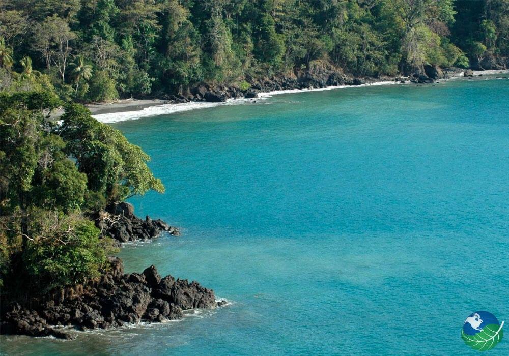 Playa Biesanz Manuel Antonio S Secret Hide Out