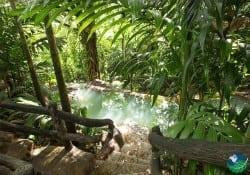 The Springs Costa Rica Hot Springs