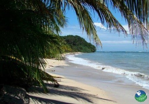 Cahuita Costa Rica