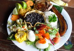 Costa Rican Cuisine Corn