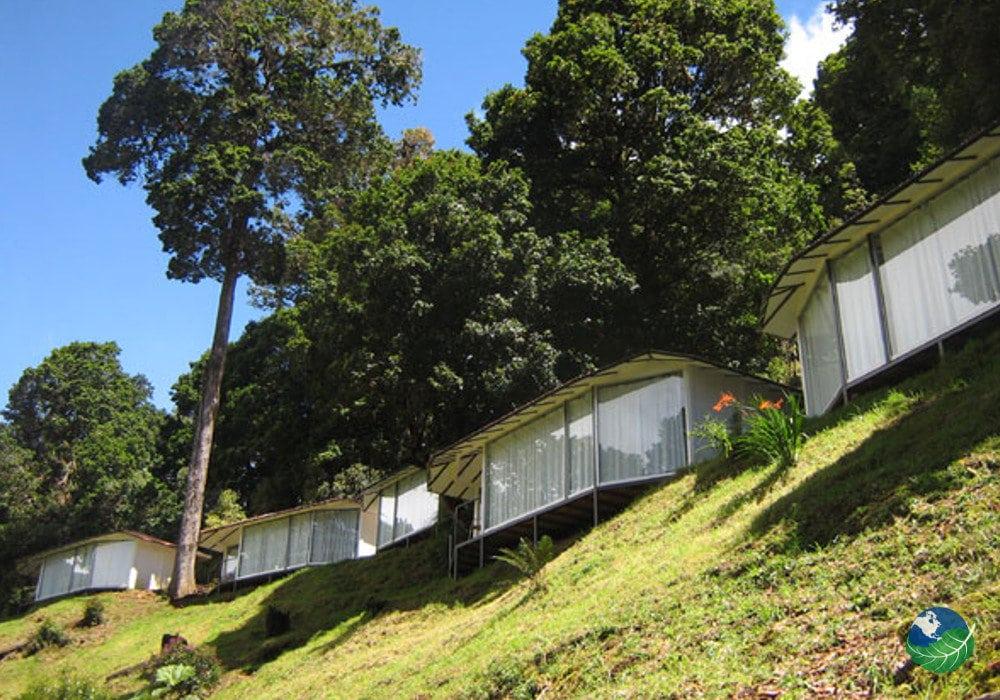 dantica cloud forest lodge san gerardo costa rica. Black Bedroom Furniture Sets. Home Design Ideas