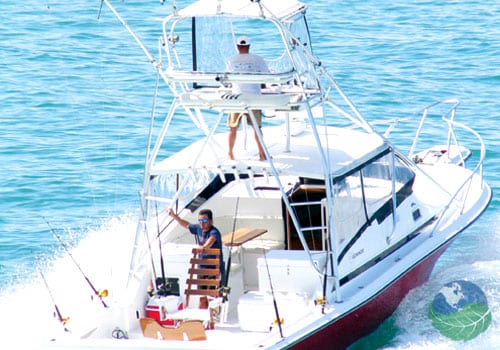 Deep sea sportfishing in manuel antonio costa rica for Deep sea fishing costa rica