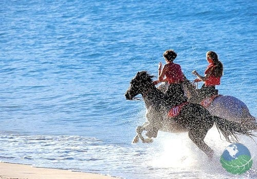 Guanacaste Tours Horseback Riding Beach