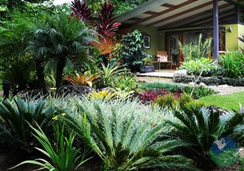 Hotel Monte Azul Gardens