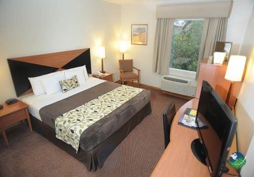 Hotel Sleep Inn Bedroom