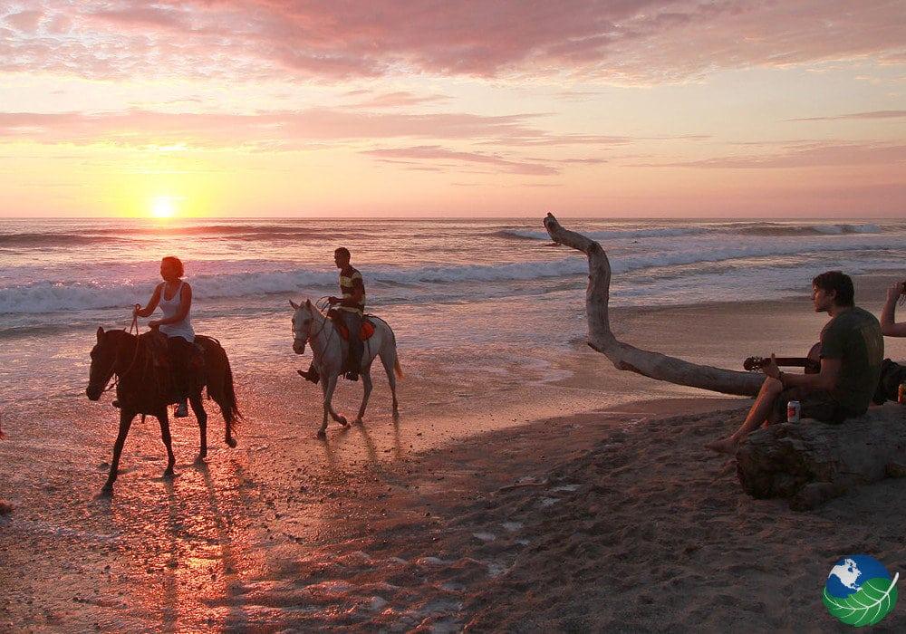 Nicoya-Horses