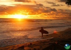 Nicoya-Sunset