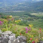 Orosi-Valley
