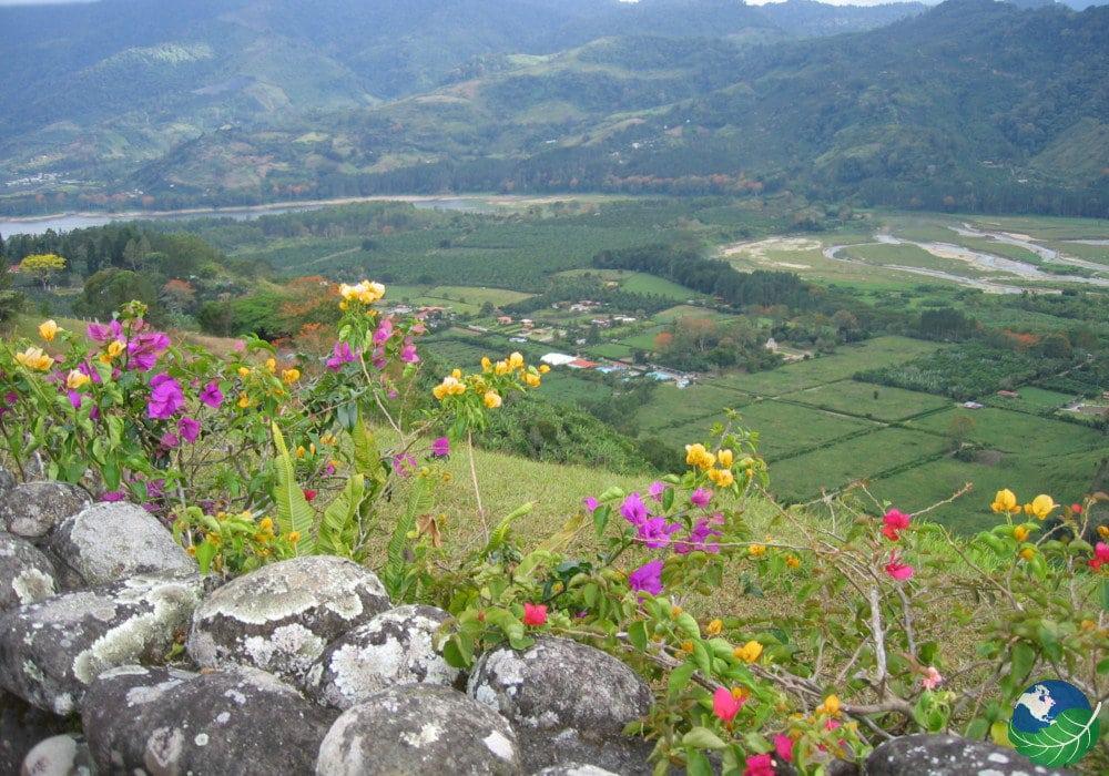 National Car Rental San Jose Costa Rica Reviews