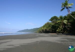 Playa-Dominical-Beach