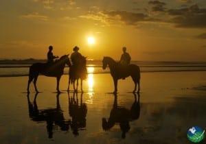 Playa-Esterillos-Horses-Sunset