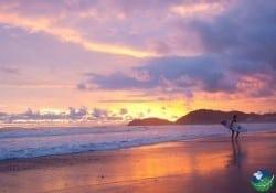 Playa-Jaco-Surfing