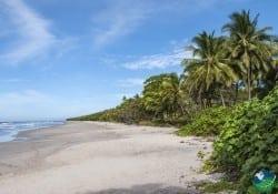 Mal Pais Costa Rica beach