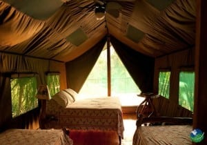 Rafiki Safari Lodge Bedroom