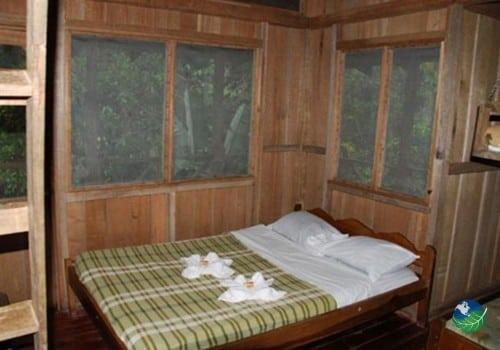 Rara Avis Bedroom