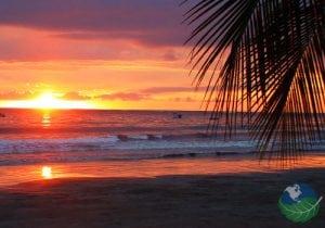Samara Beach Palm Sunset