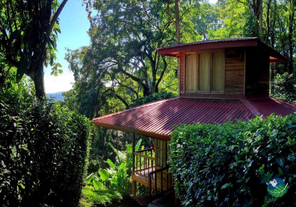 Samasati Nature Retreat View