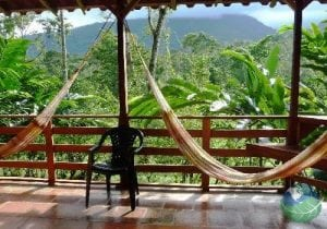 Selva Bananito Lodge Balcony