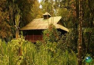 Selva Verde Lodge Exterior