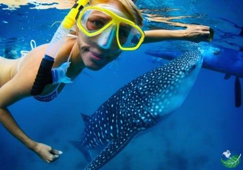 Cano Island Snorkeling child snorkeler