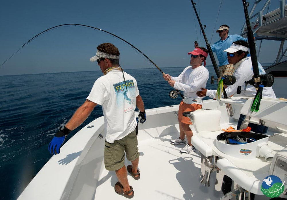 Guanacaste fishing great pelagic sport fishing in costa rica for Tamarindo costa rica fishing