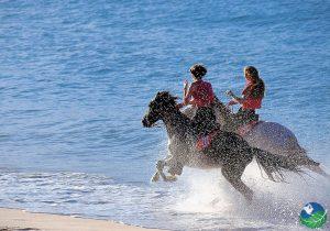 Horseback Guanacaste Beach