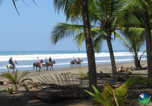 Horseback Riding Costa Rica Manuel Antonio beach