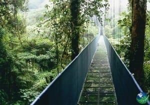 Monteverde Sky Walk Bridge