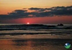 Dawn in Ostional