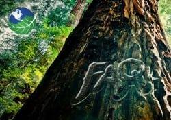 Visit Costa Rica FAQ