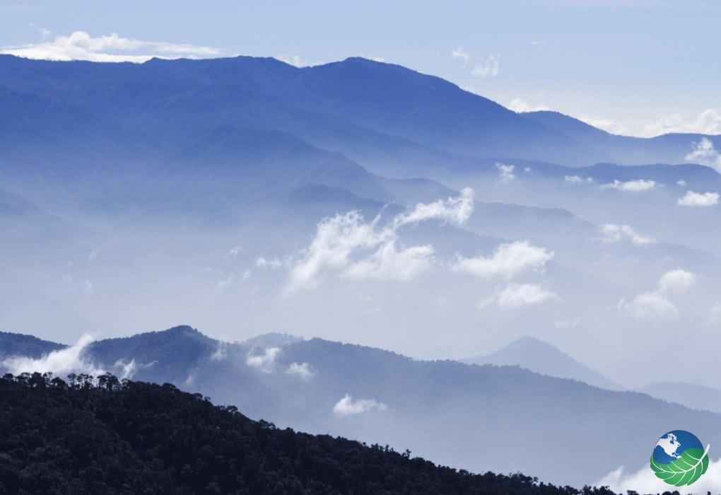 Cloud Forest San Gerardo de Dota