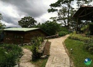 Cabins,Ambrosia en la Montaña