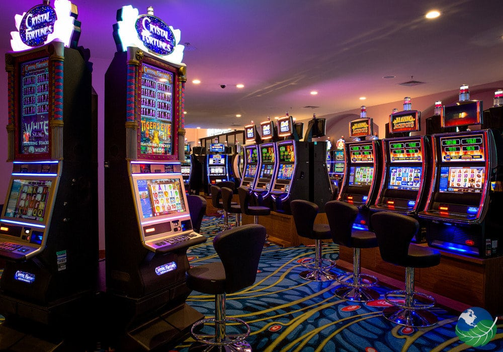 Casinos In Costa Rica
