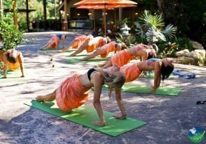 Bodhi Tree Yoga Resort