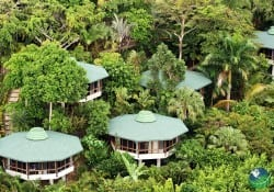 Bungalows in Canopy