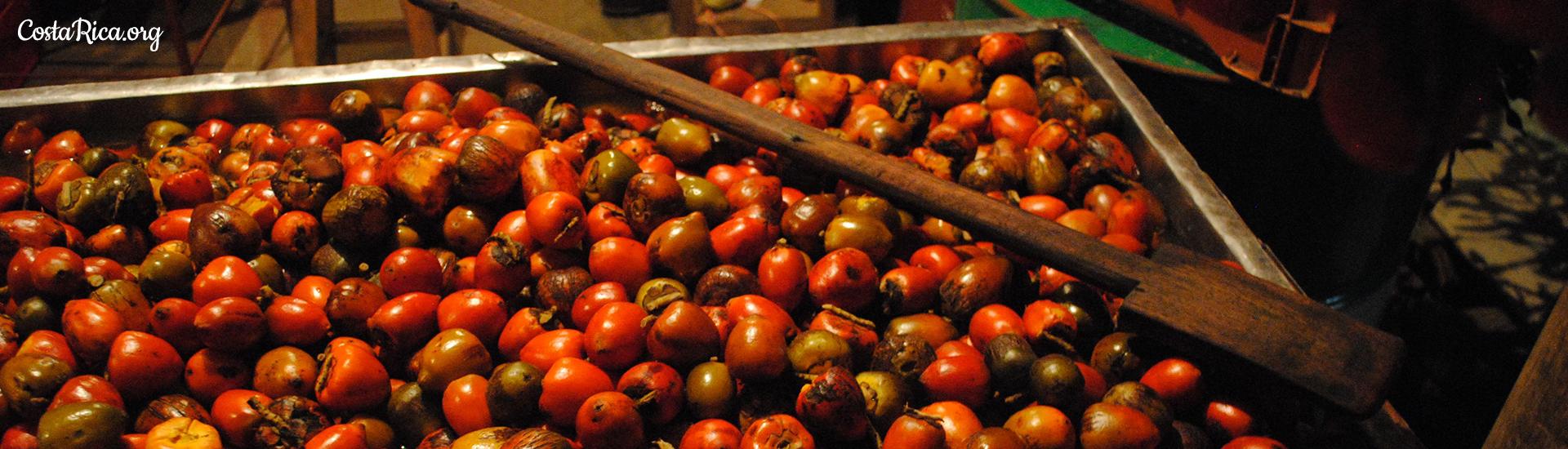Frutas de Costa Rica