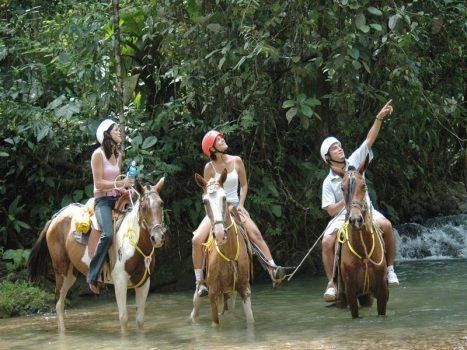 Arenal to Monteverde Caballo