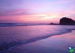 playa grande pink sunset