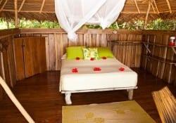 bungalow casa natural
