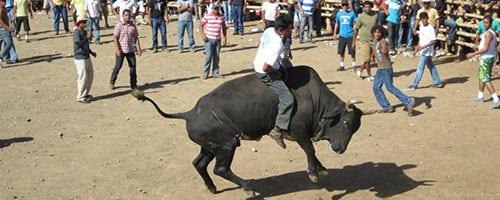 Costa Rica Bull Riding