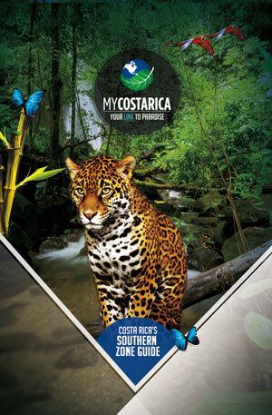 Costa Rica Southern Zone Guide